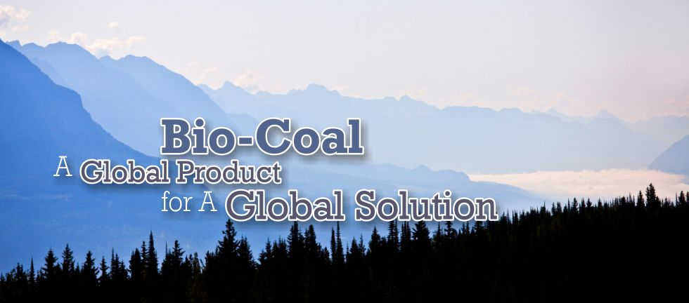 Bio-Coal, A Global Product for a Global Solution